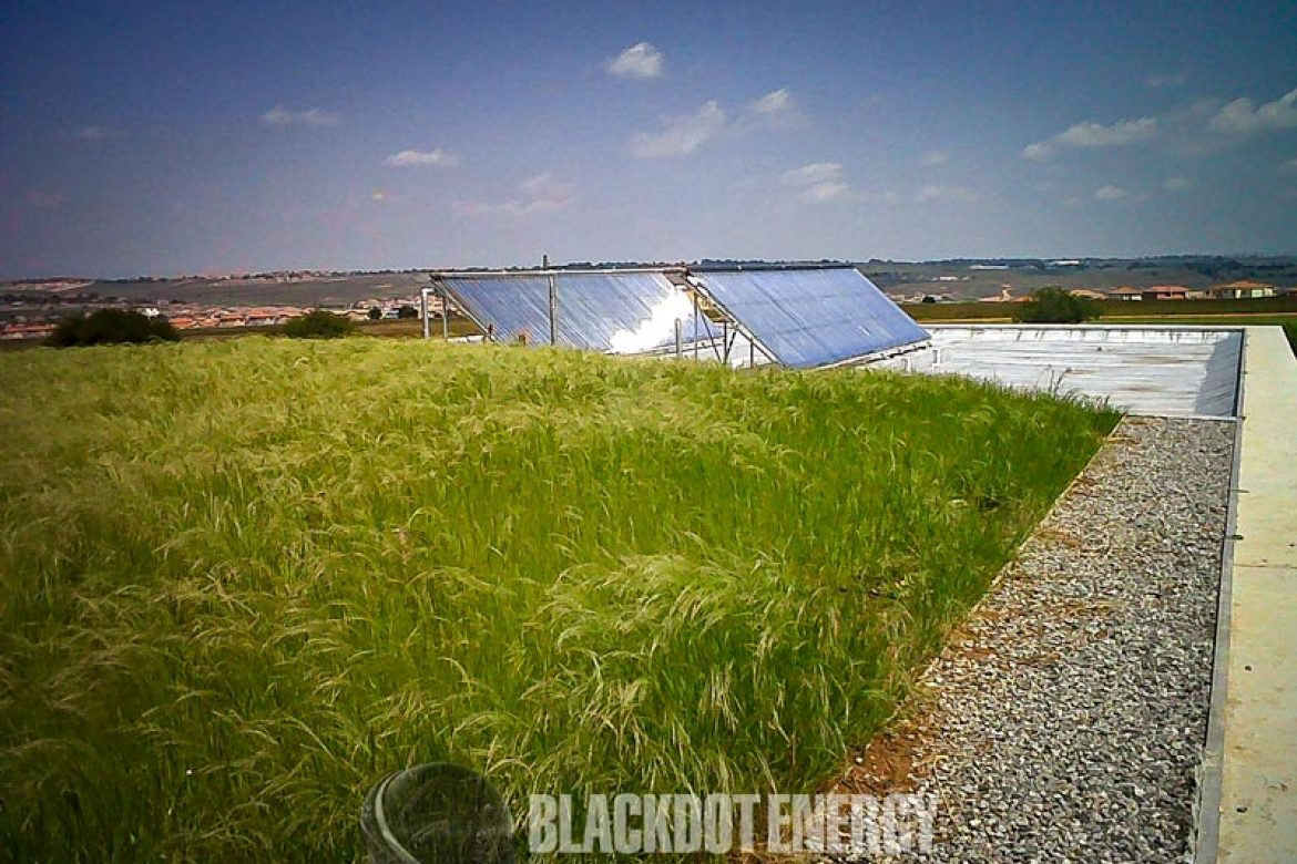 Blackdot Energy - Holms and friends - BDSA Visitors centre - 05