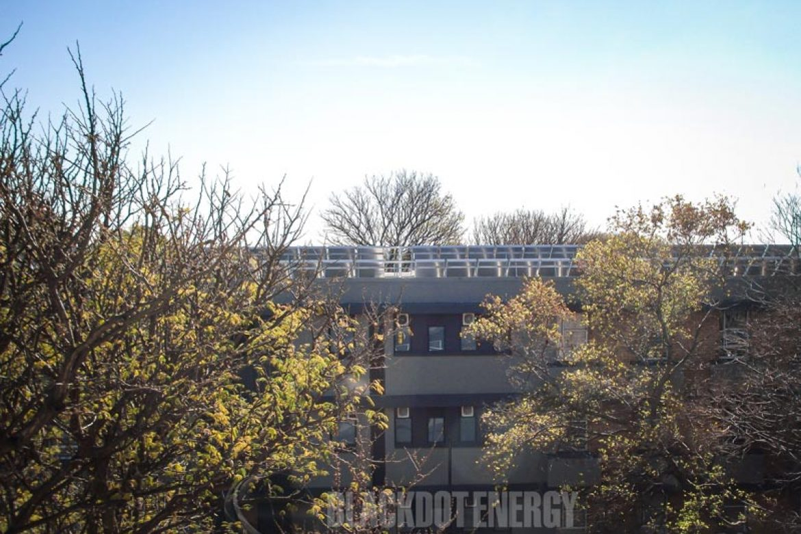 Blackdot Energy - University Pretoria - Olienhout Student Residences - 23